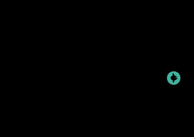 sunfish-logo